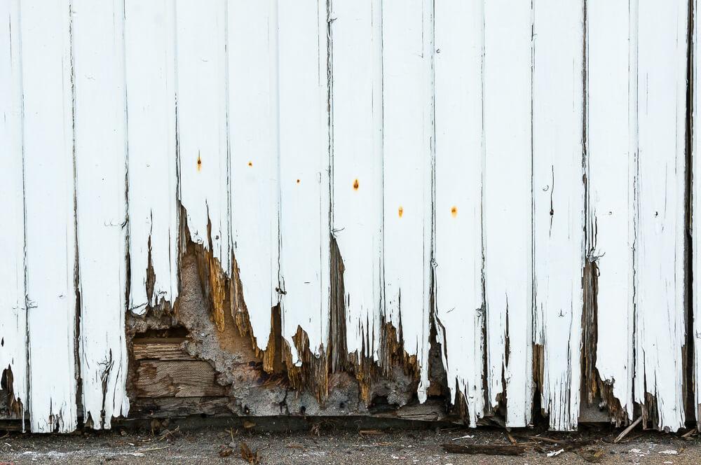 new front door rot
